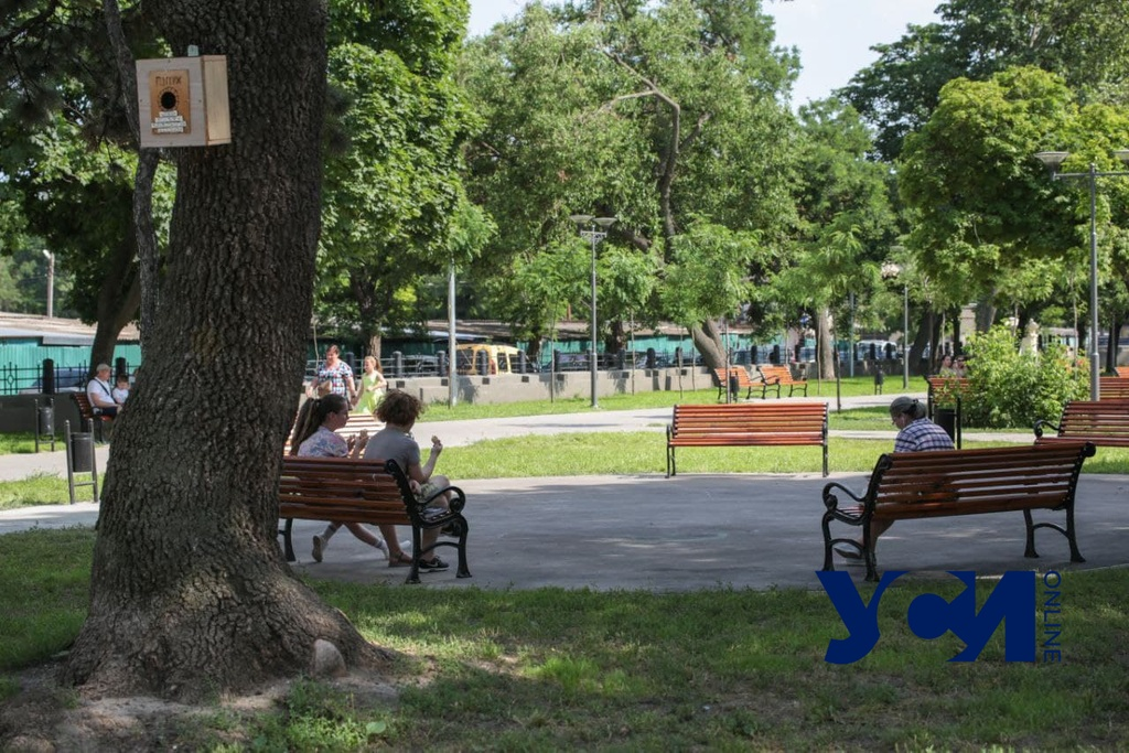 Ремонт за 36,5 «лямов»: в Одессе открыли обновленный сквер (фото) «фото»