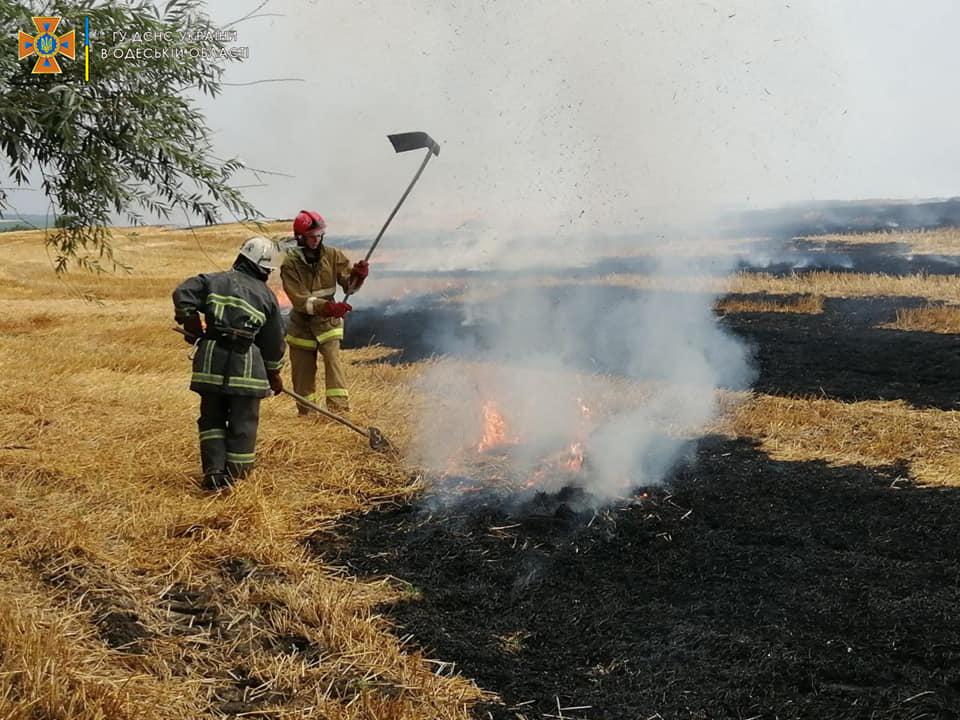В Одесской области за день горели свалка и поле (фото) «фото»