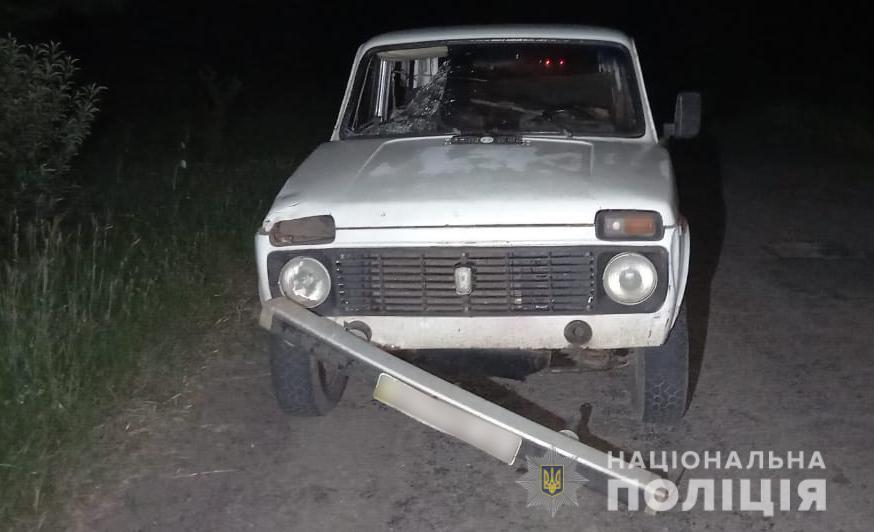 В Одесской области под колесами легковушки погиб мужчина «фото»