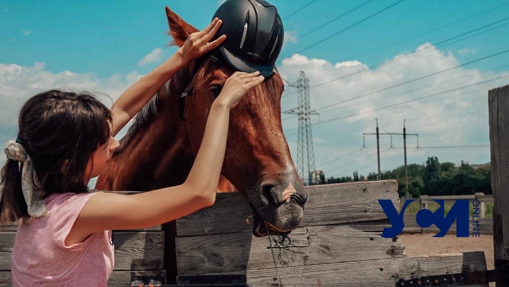 Зеленый туризм: верховая езда, лечебная гимнастика и общение с лошадьми (фото, видео) «фото»