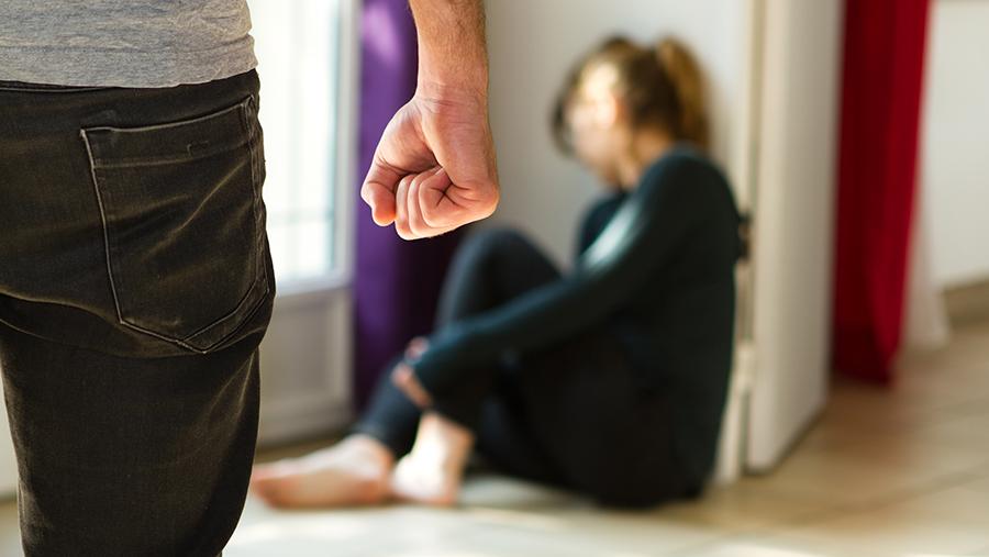Дела о домашнем насилии в Украине теперь могут рассматриваться без обвиняемого «фото»