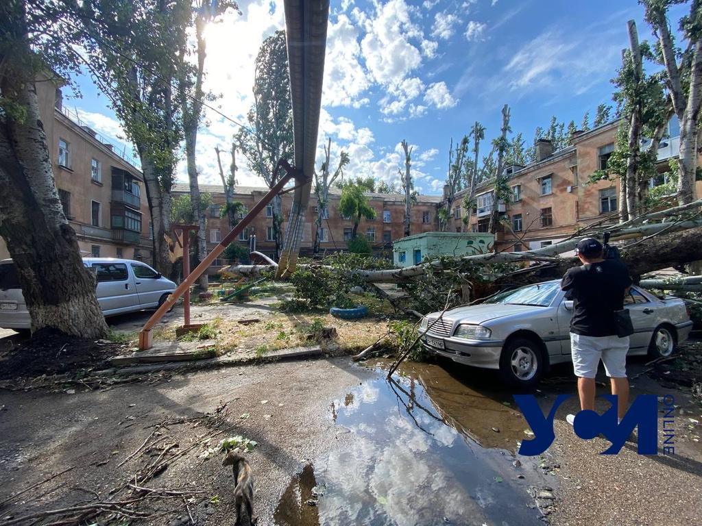 Последствия непогоды в Одессе: деревопад, подтопленные дома, остановка транспорта (фото, видео) ОБНОВЛЯЕТСЯ «фото»