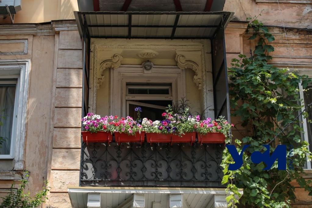 Тихое место: двор доходного дома Шульберга в Одессе (фото) «фото»