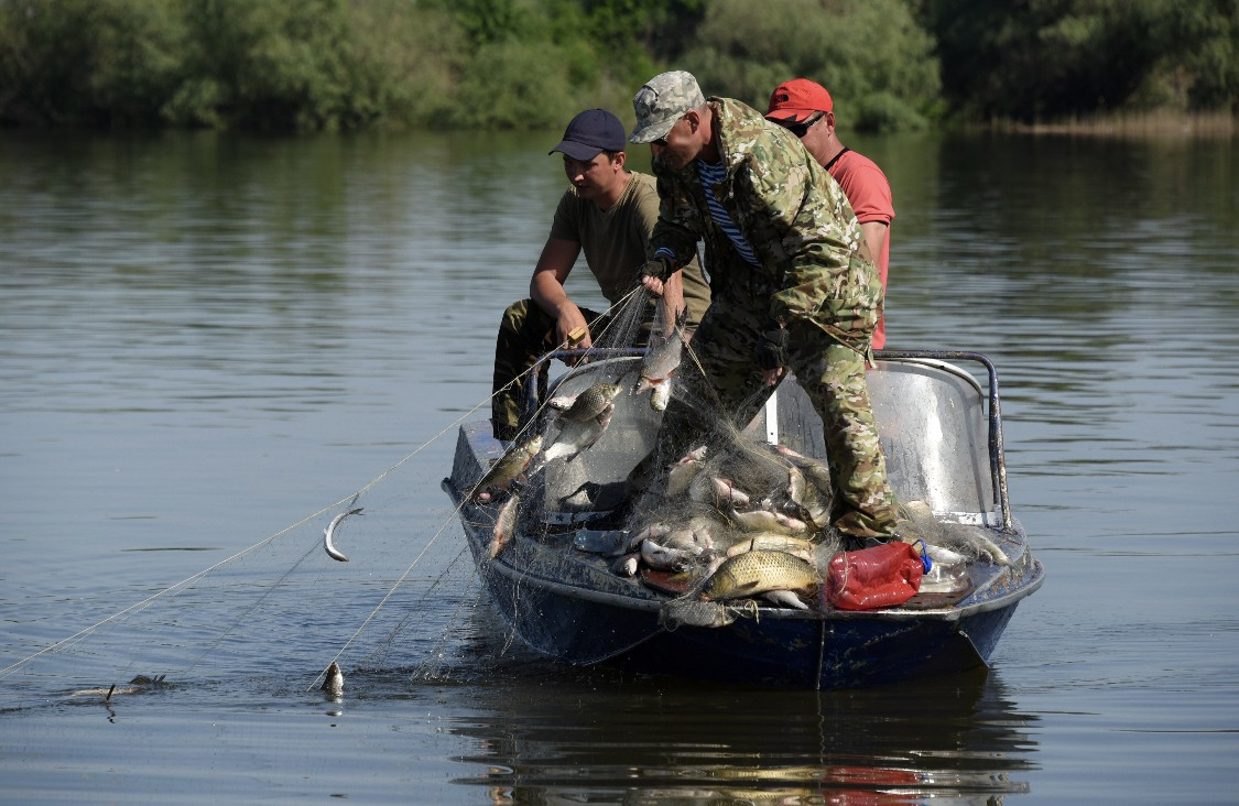 Уже можно: в Одесской области сняли запрет на лов рыбы «фото»