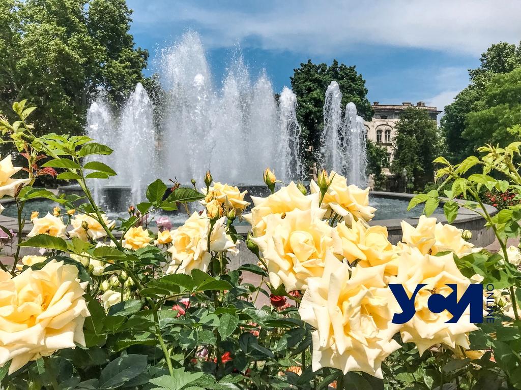 В пятницу в Одессе снова будет жарко «фото»