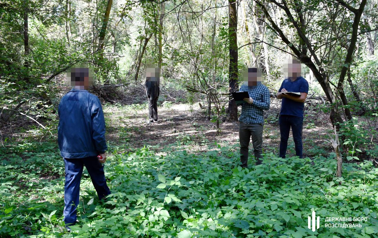 В Одесской области лесник «не заметил» вырубки 300 деревьев «фото»