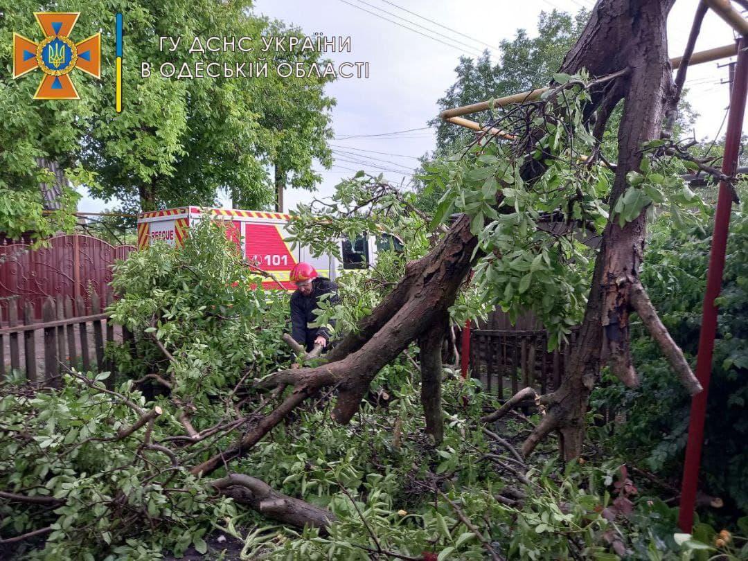 Упали деревья и затопило дома: на Подольский район обрушились дожди (фото) «фото»