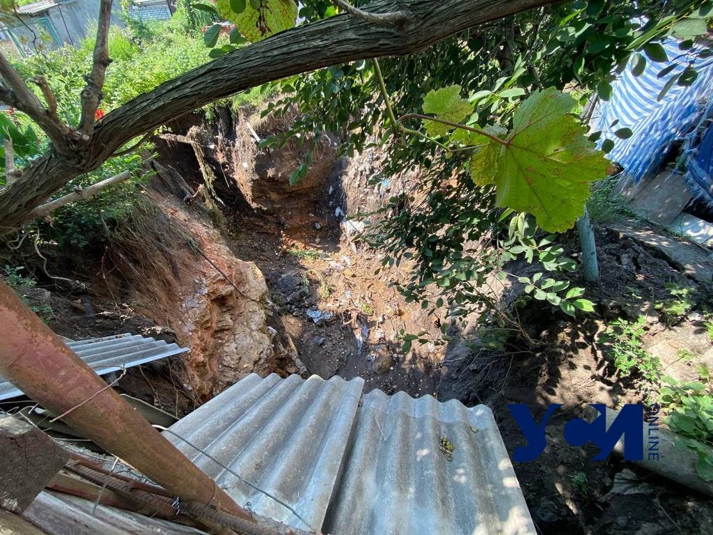Помидоры, спаржа, даже деревья — все пропало: в Кривой балке огород провалился в катакомбы (фото) «фото»