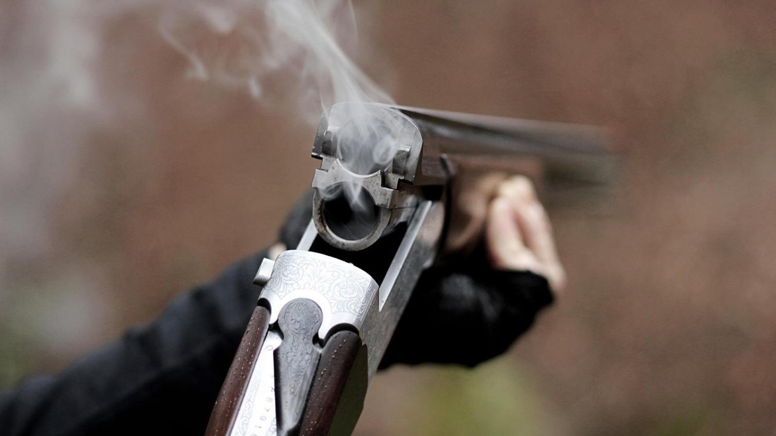 Одессит застрелил своего алабая во время дрессировки «фото»