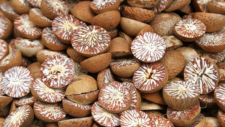 В Украину завезли опасные орехи: они могут попасть в Одесскую область (фото) «фото»