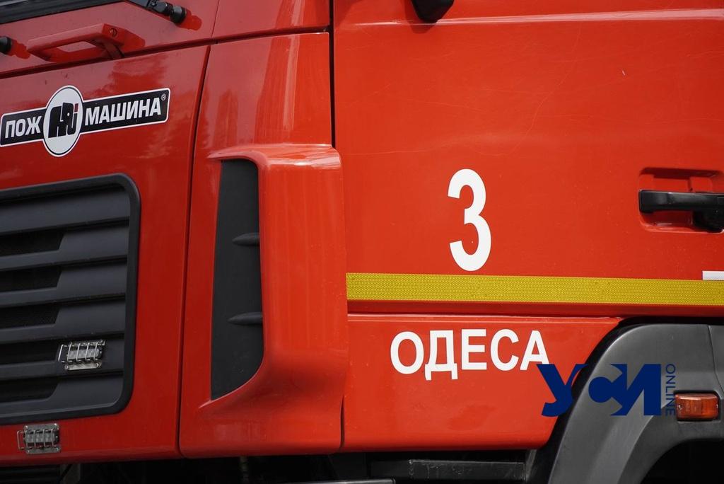 В Одесской области пожарные спасали собаку из подвала (фото) «фото»
