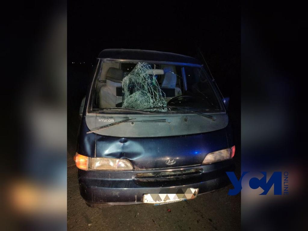 Под Одессой автомобиль сбил пешехода (фото) «фото»