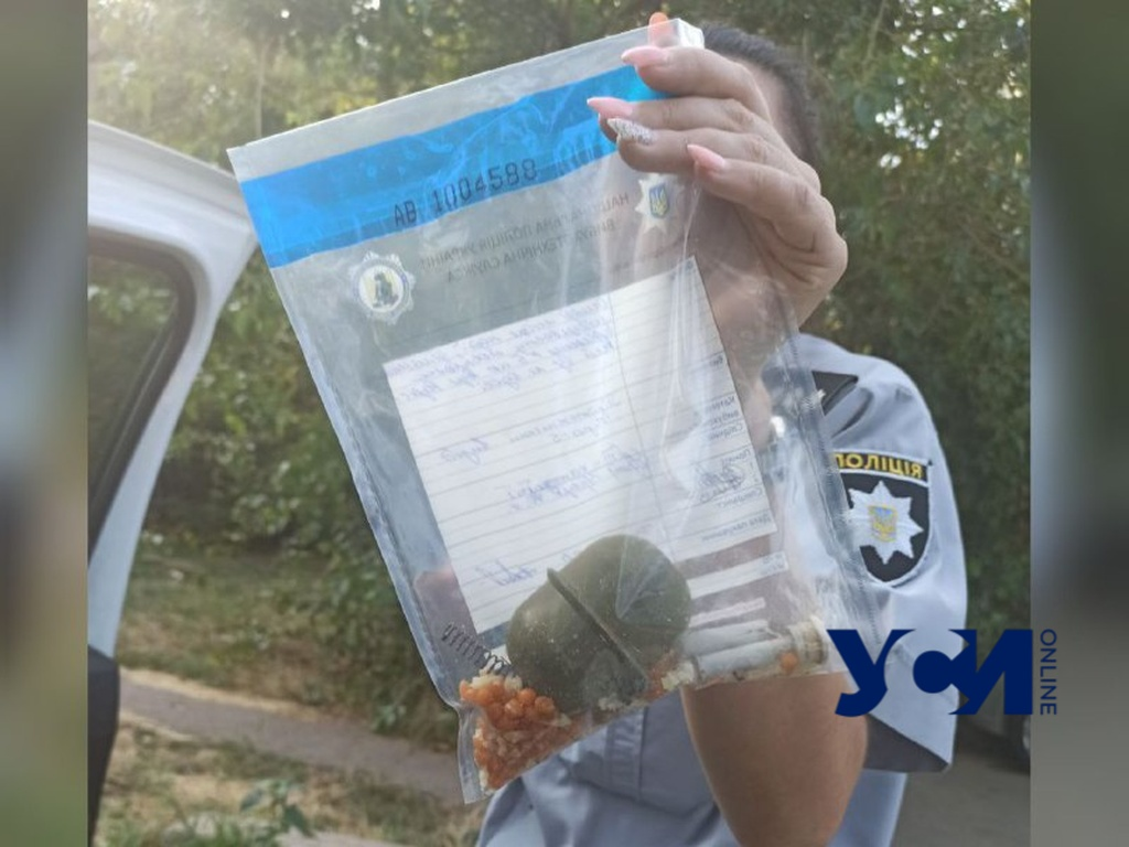 На Черемушках дети нашли боевую гранату (фото) «фото»