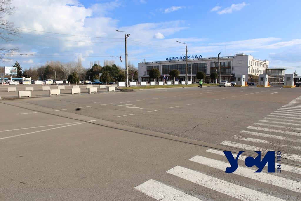 Спилят 100 деревьев: в Одессе отремонтируют подъезд к аэропорту (фото, аудио) «фото»