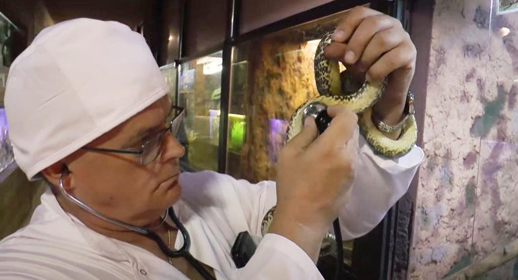 Поющий ветеринар: директор Одесского зоопарка снял новый клип (видео) «фото»