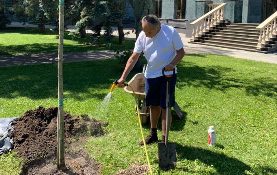 Аднан Киван лично высадил первое дерево в этом году в одном из Жемчужных кварталов (фото) «фото»