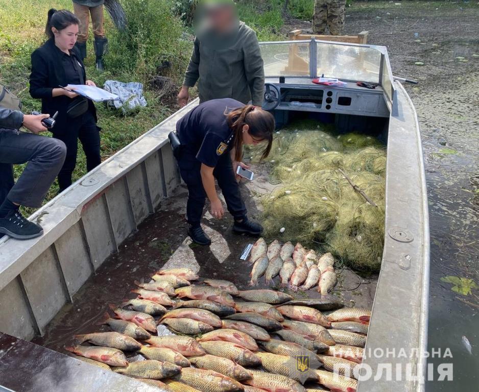 Крупный улов: в Одесской области браконьеры поймали 100 кг рыбы (фото, видео) «фото»