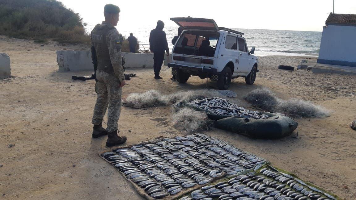 Наловили рыбы на 2 миллиона: в Одесской области задержали браконьеров (фото) «фото»