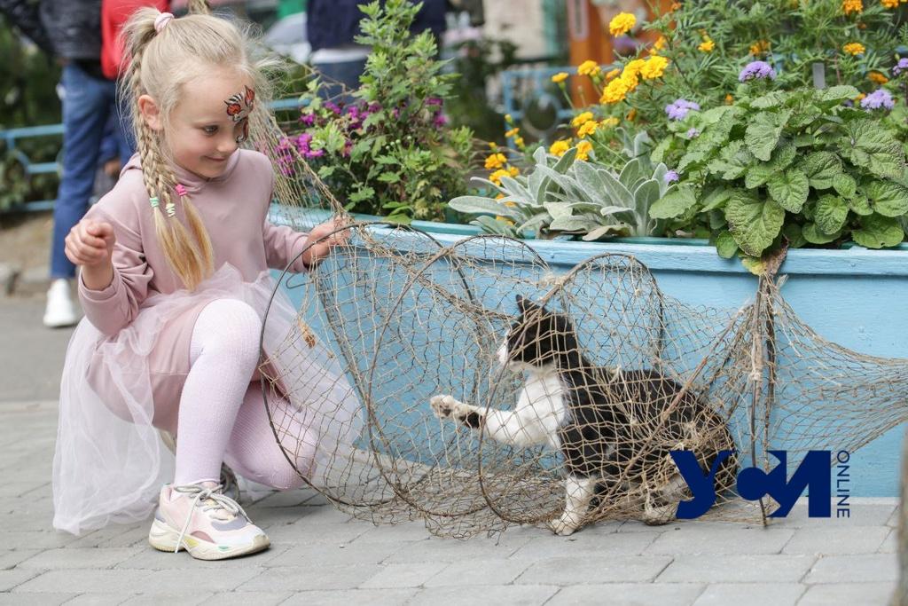 Вторник в Одессе будет солнечным «фото»