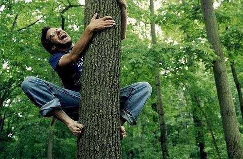 В Одессе мужчина залез на дерево и требовал вернуть ему долг «фото»