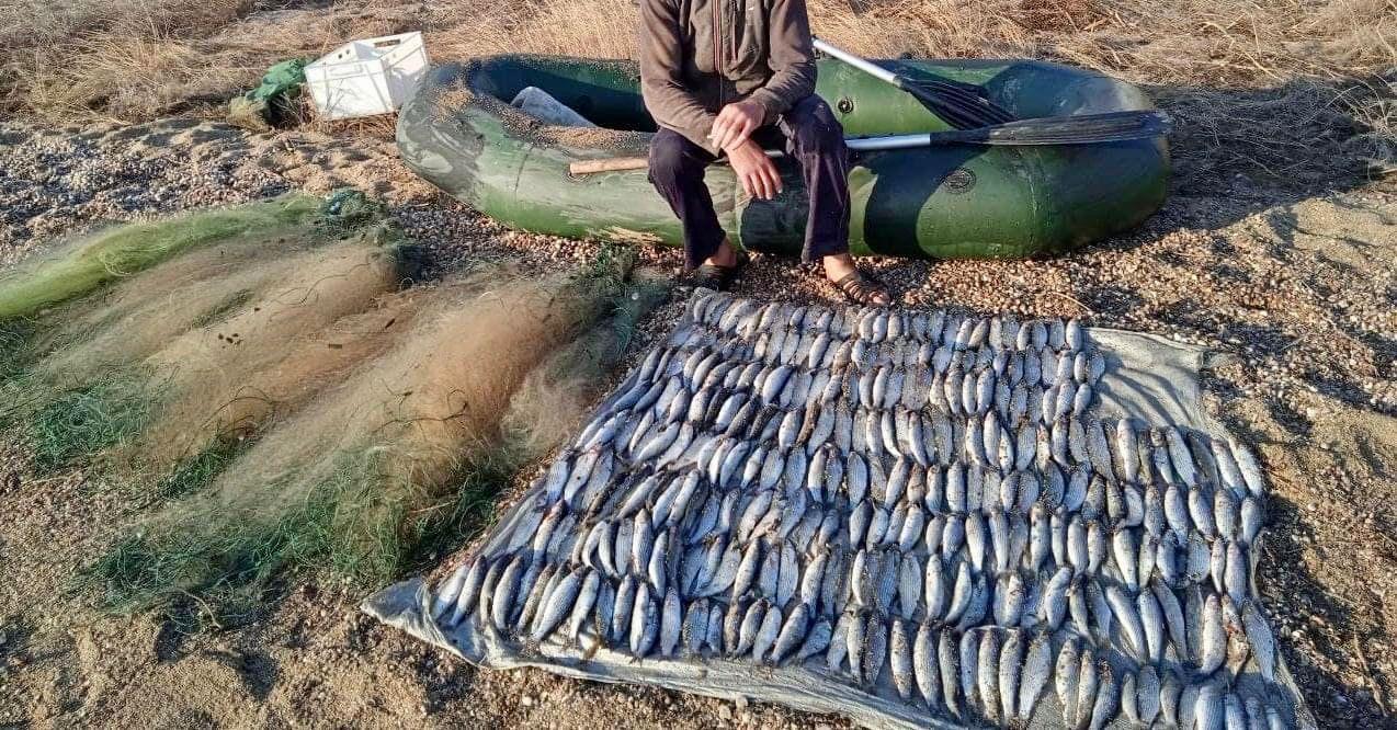 В Одесской области пограничники поймали мужчин на незаконном вылове рыбы (фото) «фото»