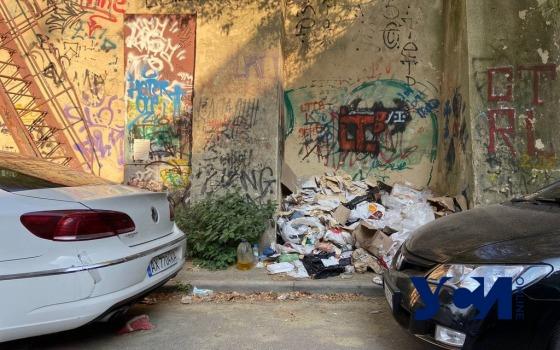 «Уродство города продолжается»: мусор на улицах и отписки от 15-35 (фото) «фото»