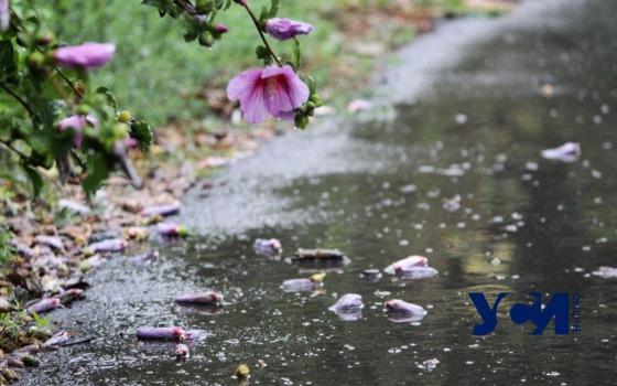 Сегодня в Одессе обещают +16 и дождь «фото»