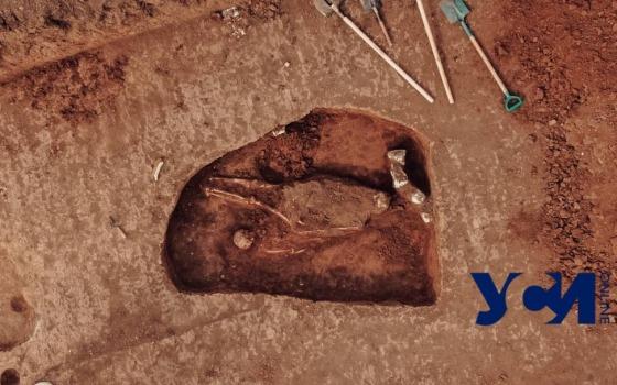 Курган в степи. Как под Одессой археологи изучают культуру древнейших скотоводов (фото, видео) «фото»