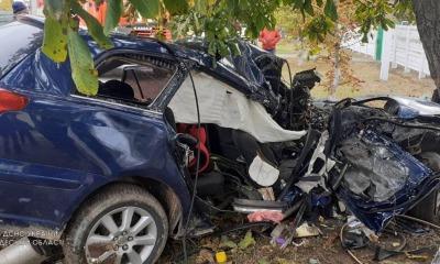 Влетел в дерево: на севере Одесской области произошло смертельное ДТП (фото) «фото»