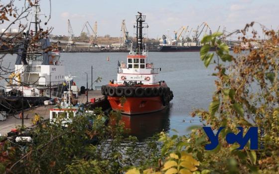 Элеваторы, портовые краны и суда: как живет Черноморский рыбпорт (фото) «фото»