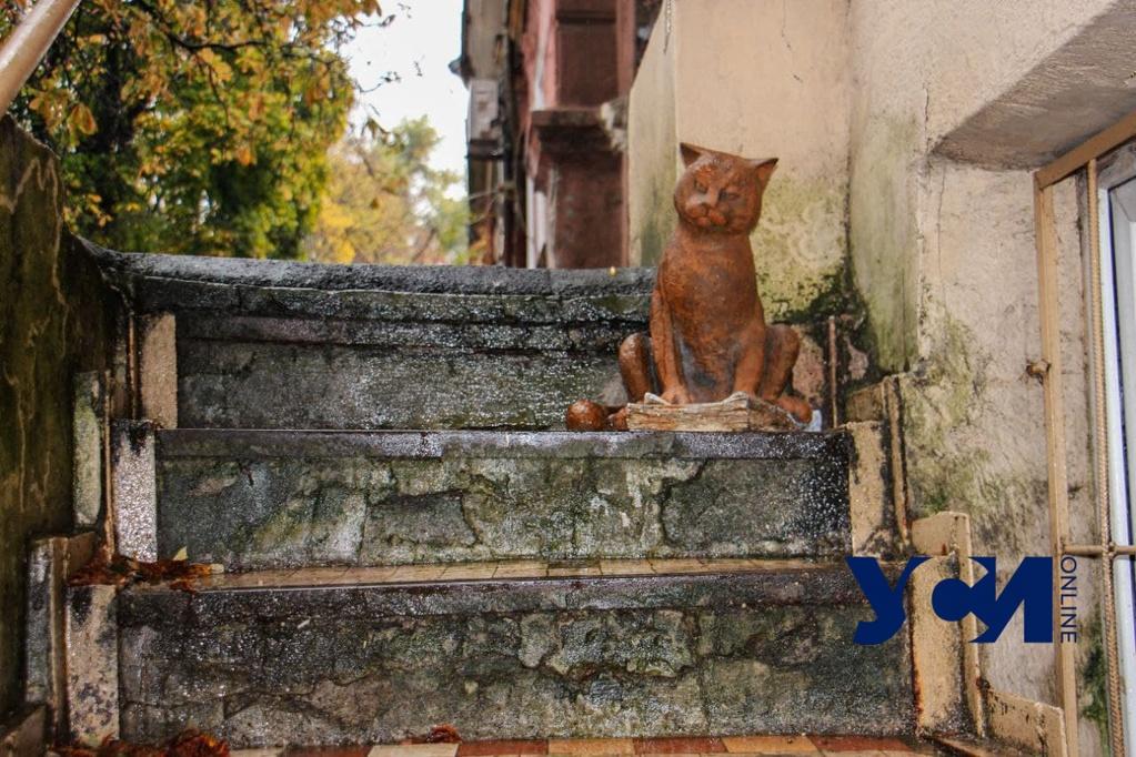 У «Одесских котов» пополнение: на Спиридоновской увековечили пушистого обитателя издательства (фото, аудио) «фото»