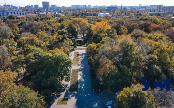 Шумящий листвой: Преображенский парк в ярких красках осени (фото, видео) «фото»